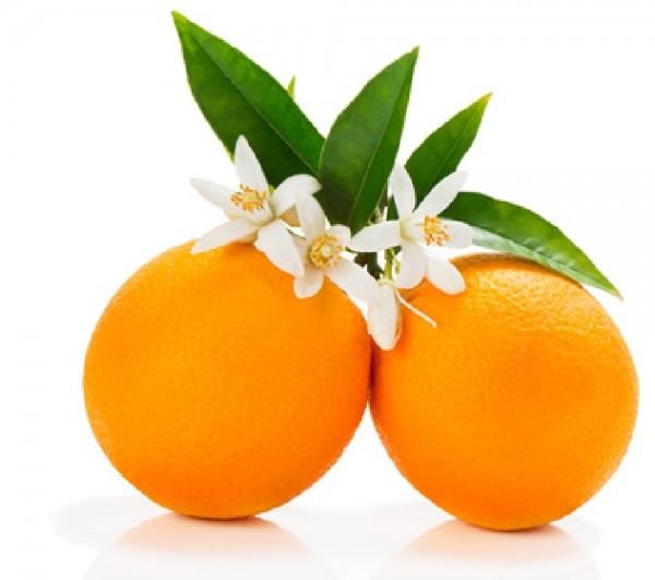 Orange Süss bio